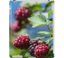 Ripe and unripe wild  Blackberries  iPad Case/Skin