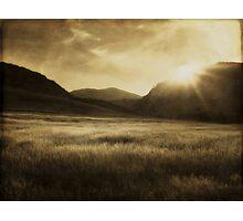 Sea of Grass Photographic Print