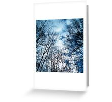 forest... Greeting Card
