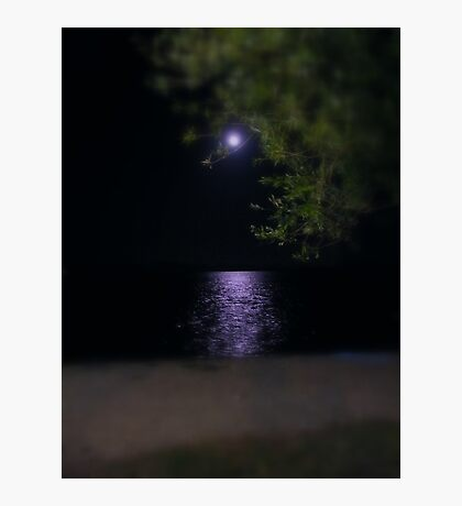moonlight... Photographic Print