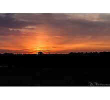 Sunset over Reeds beds Photographic Print