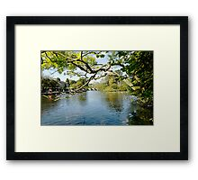 Bakewell Riverside, Through The Branches  Framed Print