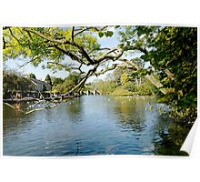 Bakewell Riverside, Through The Branches  Poster