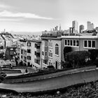Lombard Street, San Francisco by Paul Ryan