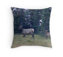 Elk at Mt Rainier National Park, Washington Throw Pillow