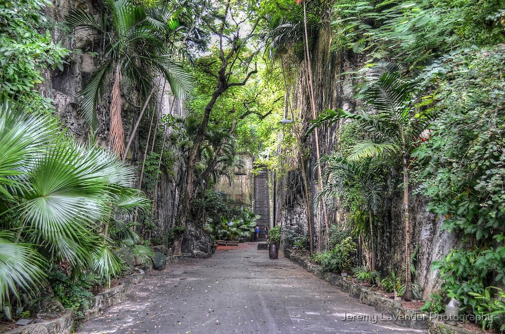 Historical Places of Nassau, The Bahamas: The Queen's Staircase by Jeremy Lavender Photography