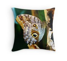 The Eye Of The Owl Butterfly Throw Pillow