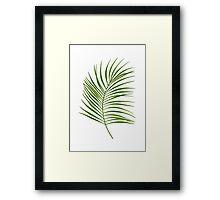 Leaf Print - 1 Framed Print