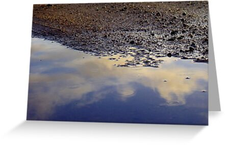 Puddles for Play by LouJay