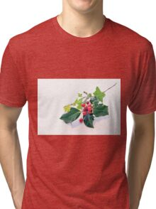 Holly And Ivy Tri-blend T-Shirt