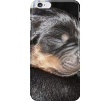 A New Arrival - Rottweiler Puppy iPhone Case/Skin