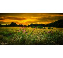 A BARMING SUNSET Photographic Print