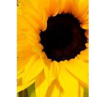 You Are My Sunshine Photographic Print
