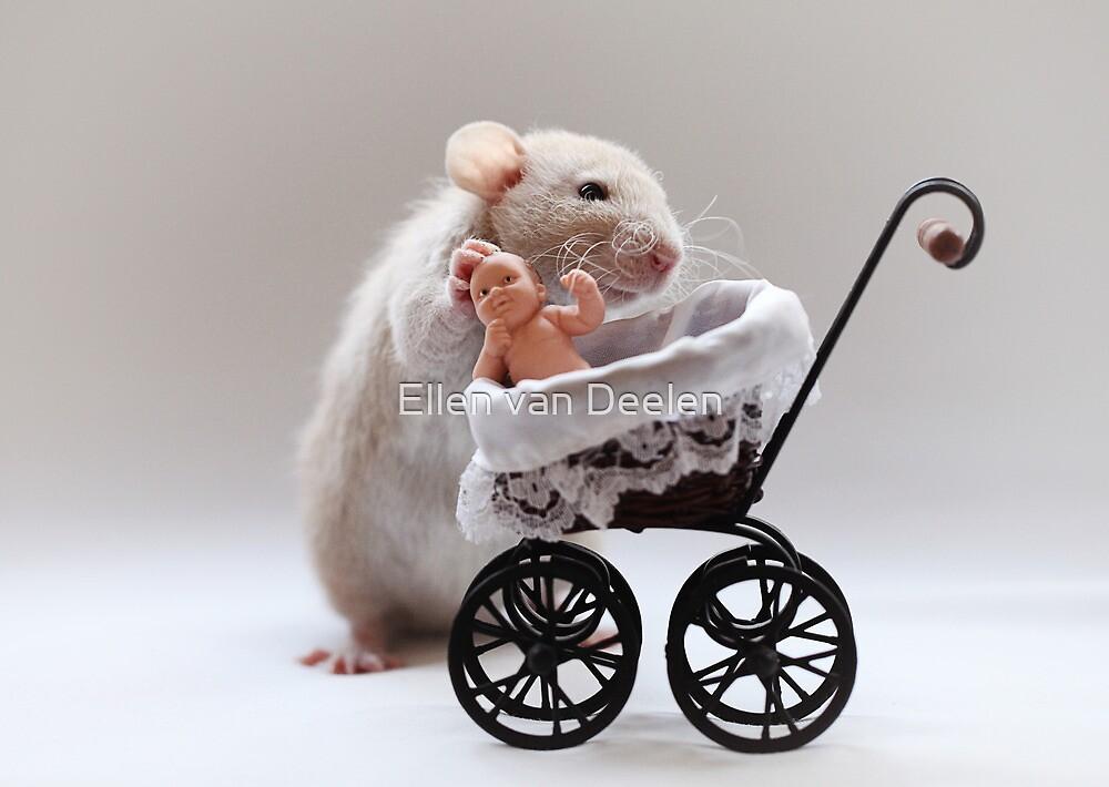 The new baby by Ellen van Deelen