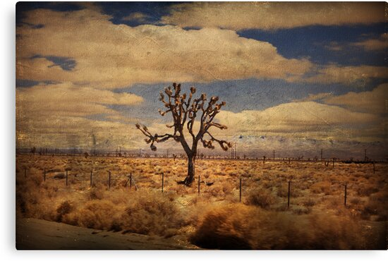 As We Go Down Life's Lonesome Highway by Laurie Search