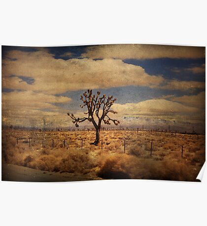 As We Go Down Life's Lonesome Highway Poster