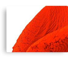 red macro rubber Canvas Print