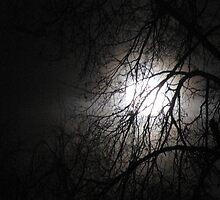 March Moon by ArtOfE
