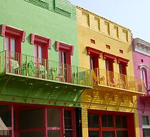 Colored Buildings Only by Stuart Steele