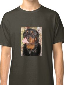 Large Male Rottweiler Licking His Lips Classic T-Shirt