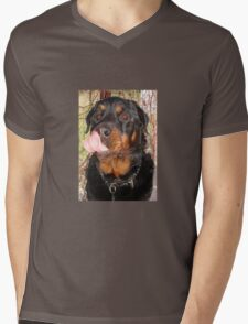Large Male Rottweiler Licking His Lips Mens V-Neck T-Shirt