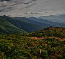 Top Of Mt Washington by barkeypf