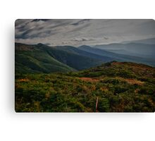 Top Of Mt Washington Canvas Print