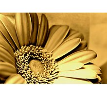 Beauty more precious than gold Photographic Print