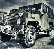 The Defender  by Ian Hufton