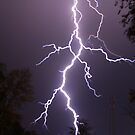 Lightning up close by Gregg Williams