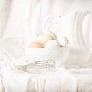 Free Range Eggs on White by Rachel Slepekis