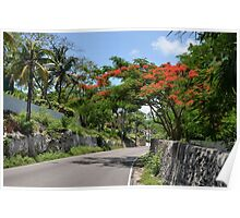 Eastern Road in Nassau, The Bahamas Poster