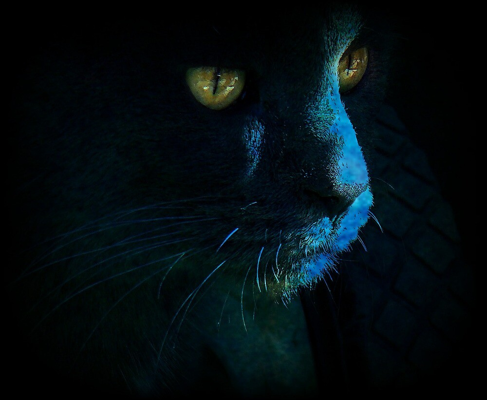 Haunting Shadow by PatChristensen