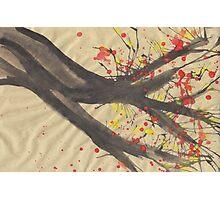 Splatter Blossoms II Photographic Print