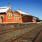 Cobar Railway Station by Darren Stones