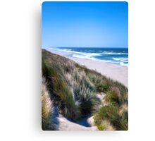 Furry Sand Dunes Canvas Print