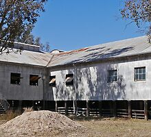 Callandoon Shearing Shed,  Qld. Australia (panorama) by Margaret  Hyde