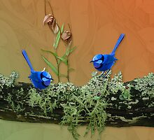 Blue Wren & Winter Orchids Western Australia by Leonie Mac Lean