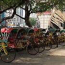 Rickshaws by Paris Franz