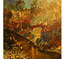 Our Little Kilmore Creek after the rains, Victoria, Australia Photographic Print