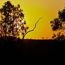 Bush Sunset by JimMcleod