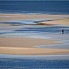 Lone Fisherman by Barb Leopold