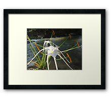 At The River Bank - Al Lado De La Orilla Framed Print