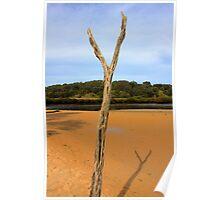 Beach driftwood - Inverloch HDR Series Poster