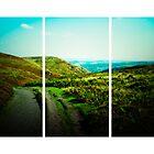 Long Mynd (Lomography) by Joel Stone