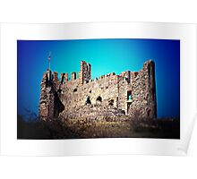 Dudley Castle (Lomography) Poster