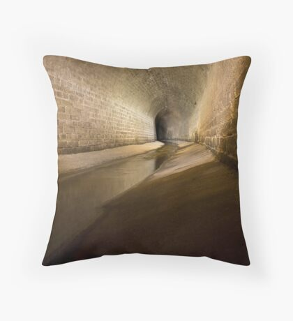 Lost in the curves Throw Pillow