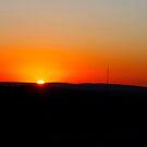 Sundown by Amanda Reed