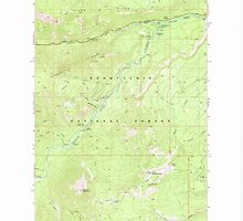 USGS Topo Map Washington State WA Old Scab Mtn 242934 1971 24000 by wetdryvac