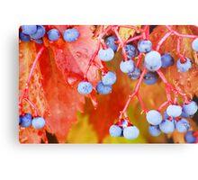 Vibrant Grape Vines Metal Print